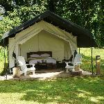 Tent No 12 ~ STUNNING