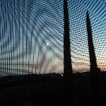 vista attraverso finestra con zanzariera