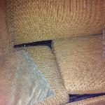 dirty couch with multiple roaches in crevices
