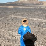 di ritorno dopo la gita nel deserto