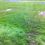 flooded pitches & muddy pathway