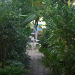 Lush vegetation welcomes you.