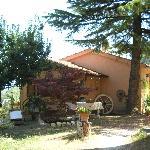Foto de Villa Serena Residenza di Campagna