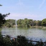 Vista interna della Pineta sud (Dannunziana) di Pescara
