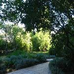 Le Mas du Chanoine - giardino