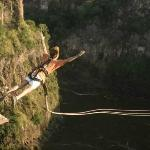 Wild Horizons Gorge Swing, Highwire & Adventure Slides