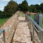 On Exeter's Roman Wall