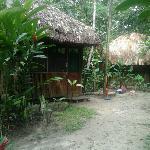 Cabana di Jungle Palace