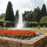 Arley Arboretum