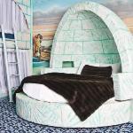 Igloo Luxury Theme Room