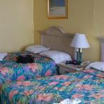 clean, comfy beds
