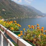 Lake Como + Marigolds