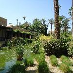 dans le jardin du Riad