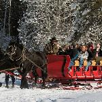 Mountain Springs Lodge Sleigh Rides