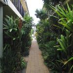 the lush gardens leading to the rooms