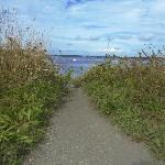 Ocean View Trail