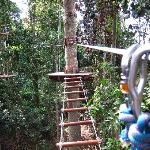 ‪Tree Top Adventure Park, Pattaya‬
