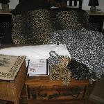 Leopard stuff in the leopard room