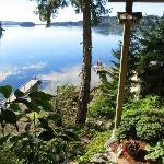 view from the patio door