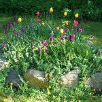 Sonnige und schattige Plätzchen findet der Besucher im Garten.