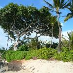 Beach in front of Paia Inn