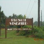 Bloxom Vineyard, VA