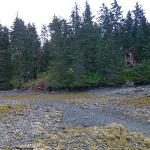 Looking up at cabins during low tide