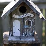 Bird B&B in garden!