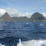 The Pitons, with dolphins!