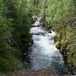 The falls....