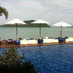 pool & loungers