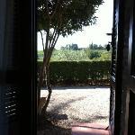From our Terrace door