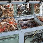 Esposizione pesce
