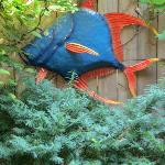 Whimsical, fun fish on patio wall