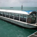 Green Island Cruise - Day Tour (Big Cat Green Island Reef Cruise)