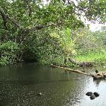 Romantic Lagoon behind La Diosa