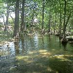 Wimberly Creek