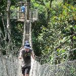 Canopy Walkway tour comes with the Napo Lodge