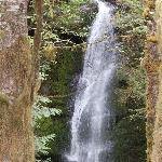 Merriman Falls