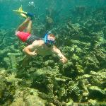 Cap Juluca Snorkel Trip