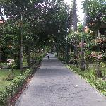 The flat walking path that links the resort.