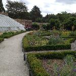 newly renovated glasshouses and garden at Walled Garden