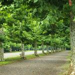 パリの公園みたい!