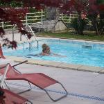 pool at Villa Nada