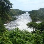The River Nile from Murchison Falls