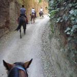 passaggio in una via cava etrusca