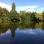 the view of the boating lake from the bench near the obstacle course