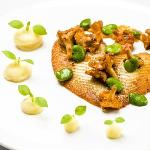 Pan fried brill fillet served with mashed potato, broad beans and chanterelle dressing