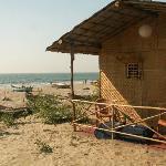 Coco huts at PN's Place shack at Mandrem Beach