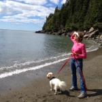 Point Wolf Beach at Funday National Park